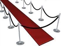 Black Velvet Stanchions with Red Carpet